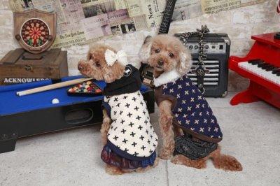 画像1: 「犬服パンツ、ズボン」 ペイズリーデニムパンツ(S〜XL)即日出荷出来ます!