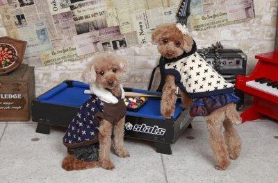 画像1: 「犬服スカート」 ペイズリーデニムスカート(S〜XL)即日出荷出来ます!