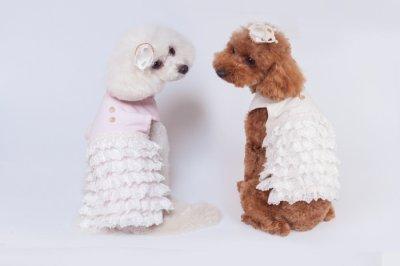 画像1: [犬服ワンピース]オーガニックレースカンカンワンピース(XS〜XL)