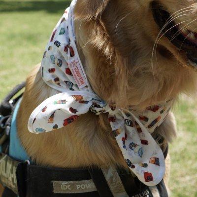 画像3: [大型犬 服/アイススカーフ/熱中症対策]クールスカーフ(2XL)