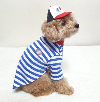 画像1: 「大型犬服」  USAストライプTシャツ(2XL)
