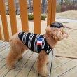 画像7: 犬服 おしゃれ ノースリーブ S M L XL 小型犬 中型犬 春夏秋冬 ボーダー Vネック Tシャツ 即日出荷出来ます (7)