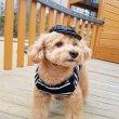 画像8: 犬服 おしゃれ ノースリーブ S M L XL 小型犬 中型犬 春夏秋冬 ボーダー Vネック Tシャツ 即日出荷出来ます (8)