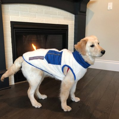 画像3: 「犬服Tシャツ」 アウトドアスタイルフリースジップアップベスト(XS〜XL)