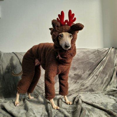 画像1: 犬 の 帽子  S M L 小型犬 中型犬 秋 冬 犬用 猫用 うさぎ トナカイ 変身 コスプレ もこもこ動物 即日発送できます