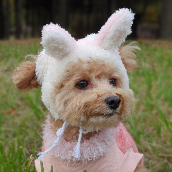 画像1: 犬 の 帽子  S M L 小型犬 中型犬 秋 冬 犬用 猫用 うさぎ トナカイ 変身 コスプレ もこもこ動物 即日発送できます (1)
