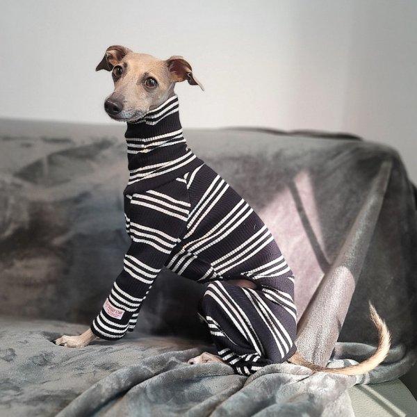 画像1: イタグレ服 S M L XL 小型犬 中型犬 春夏服 秋冬服 doggystar ボーダーロンパース つなぎ 即日出荷出来ます (1)