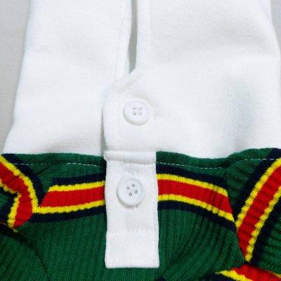 画像1: 「イタグレ服」 イタリアングレーハウンド ウィペット ベドリントンテリア ラガーシャツ(S~XL) 即日出荷出来ます